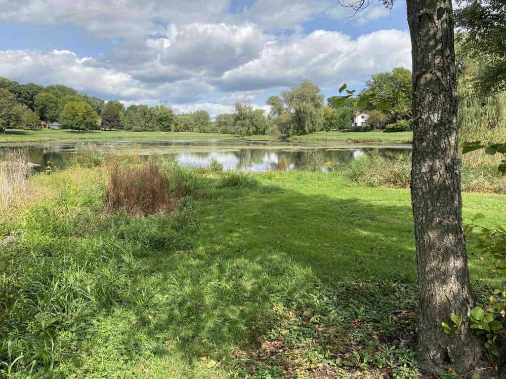 Brook Park 4